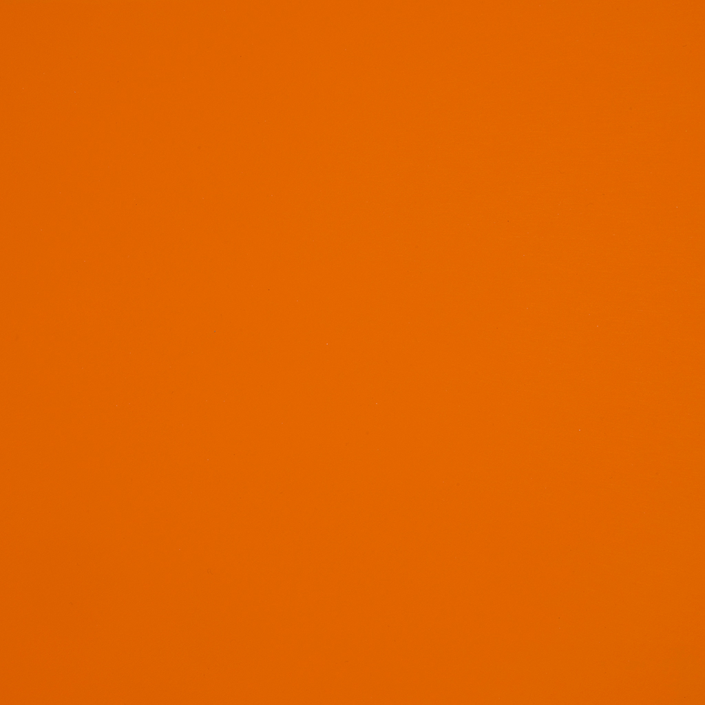 0699 Оранжевые Бархатцы LUCIDA, ERRE