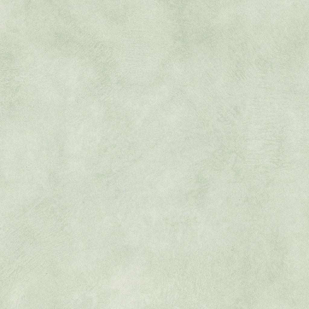 2572 Бархатная зелень LUCIDA