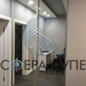 встроенные двери с зеркалом